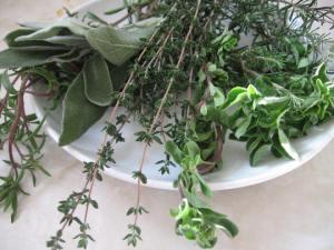 1 herbs